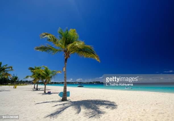 stunning beach in barbados - bridgetown barbados stock photos and pictures
