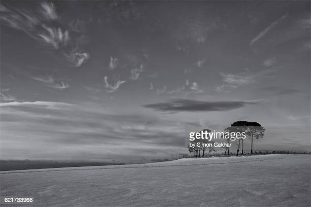 Stunning Black and White Landscape Photograph in Winter