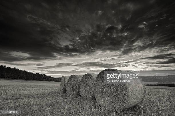 Stunning Black and White Landscape Photograph of strawbales