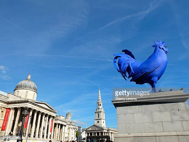 Stunning blue sculpture of a cock, a typical French symbol, on Trafalgar square, a quintessential British symbol.
