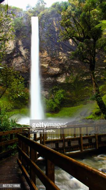 Stunning Bridal Veil Falls in Waikato