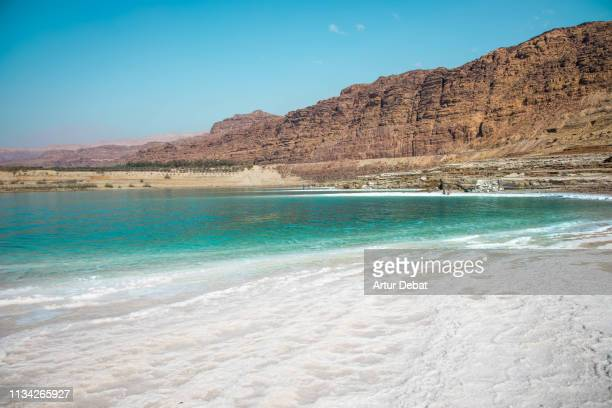 stunning colors of the dead sea. - 死海 ストックフォトと画像