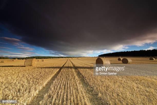 Stunning Field of Haybales in Summer under Moody Sky