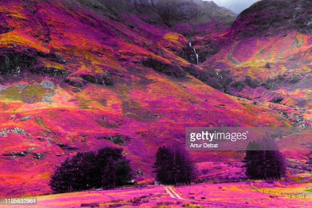 stunning infrared photography landscape of the highlands mountains in scotland. - infrarosso foto e immagini stock