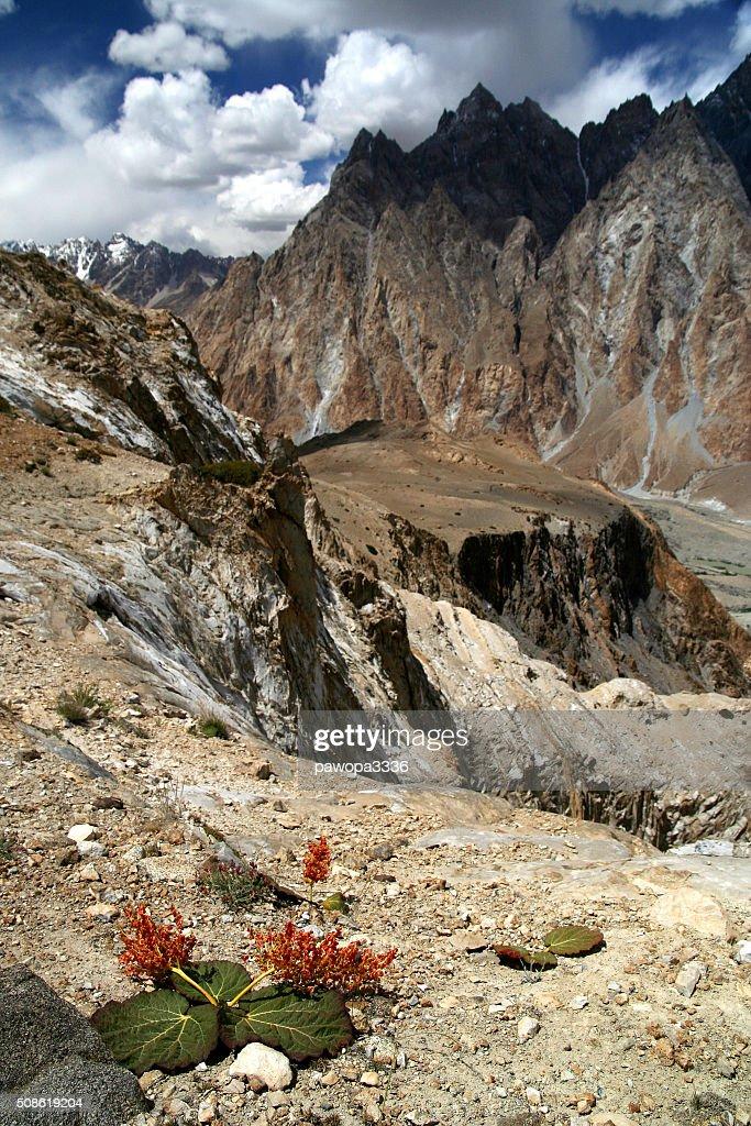 Stunning Karakorum mountains : Stock Photo