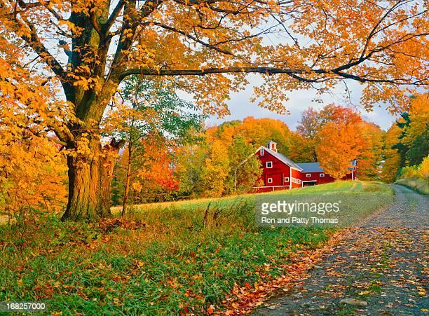 Autunno nel Vermont