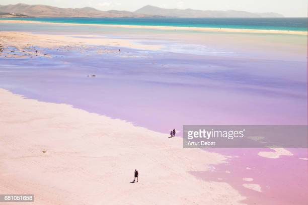Stunning pink lagoon with turquoise water beach in the south of Fuerteventura island taken for elevated view during travel vacations.