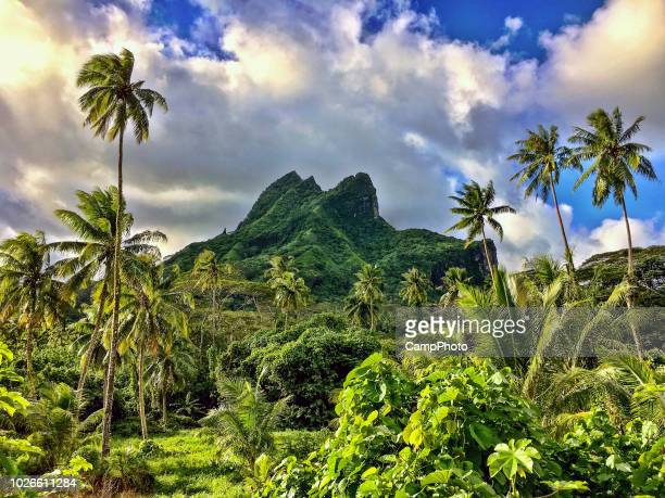 stunning raiatea landscape - tahiti stock pictures, royalty-free photos & images