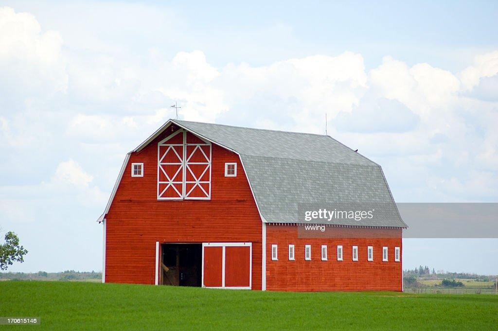 美しいレッドのバーンのグリーンフィールド穀物クロップ : ストックフォト