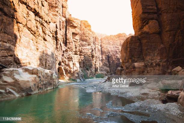 stunning red canyon with river in jordan. - dead sea stock pictures, royalty-free photos & images