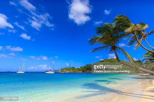stunning saltwhistle bay, yachts, white sand beach, blue sea, overhanging palm trees, mayreau, grenadines, st. vincent and the grenadines, windward islands, west indies, caribbean, central america - セントビンセント島 ストックフォトと画像