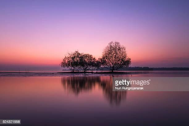 stunning sunrise - nun stock-fotos und bilder