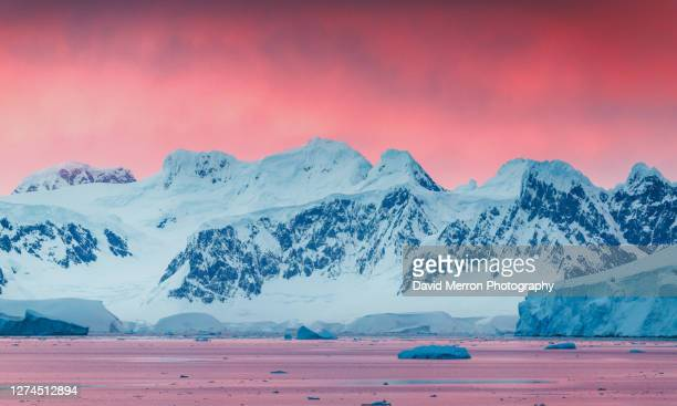 stunning sunset on the antarctic peninsula - antarctic sound stock pictures, royalty-free photos & images