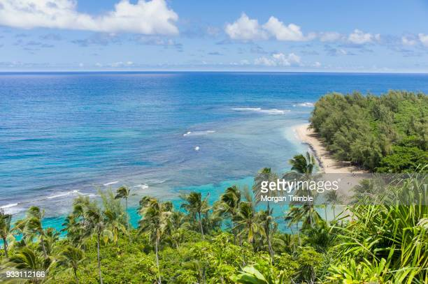 stunning view of ke e beach along hanakapiai portion of the kalalau trail, kauai, hawaii, usa - na pali stock photos and pictures