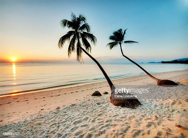 stunning views of ko samui - ko samui stock photos and pictures