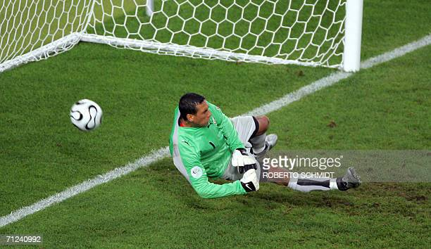 Tunisian goalkeeper Ali Boumnijel fails to stop a penalty kick by Spanish forward Fernando Torres for a goal during the opening round Group H World...