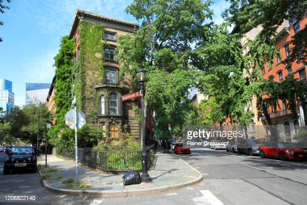 stuyvesant street with old brick buildings and many trees with lush foliage - rainer grosskopf stock pictures, royalty-free photos & images