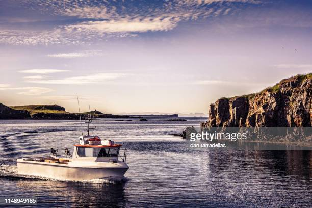 stykkisholmur fishing vessels. iceland. - fishing boat stock pictures, royalty-free photos & images
