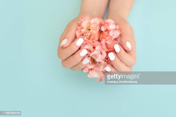 stylish trendy female manicure. flower in beautiful young woman's hands. blue background. - hand cream stock photos and pictures
