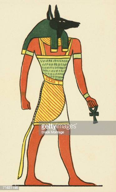 Styllized illustration of Anubis the Egyptian god of the dead