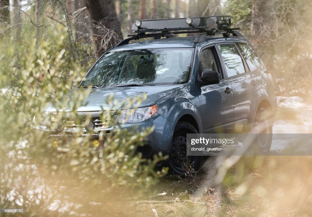 Subaru Forester Offroad In Woods Stock Photo - Getty Images