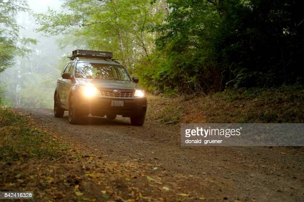2012 subaru forester on misty forest service road - united_states_house_of_representatives_elections_in_florida,_2012 stock pictures, royalty-free photos & images
