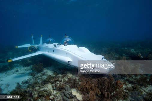 Submarine on the coral reef
