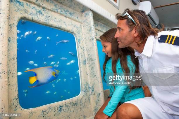 submarine reef tours - 潜水艦 ストックフォトと画像