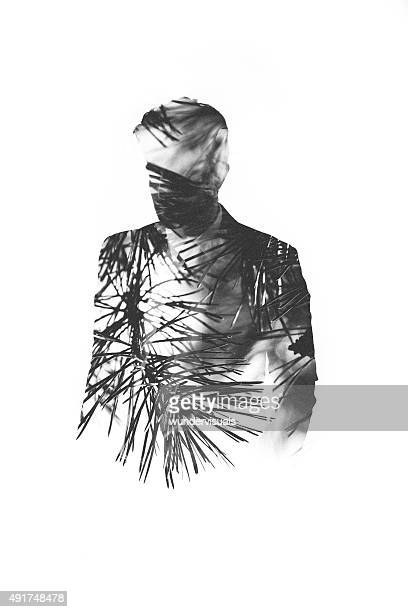 subtle male form filled with pine needles in double exposure - tak plantdeel stockfoto's en -beelden