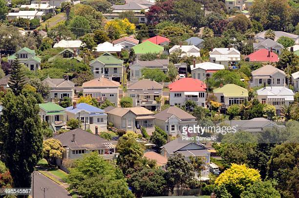 Suburban houses in Auckland
