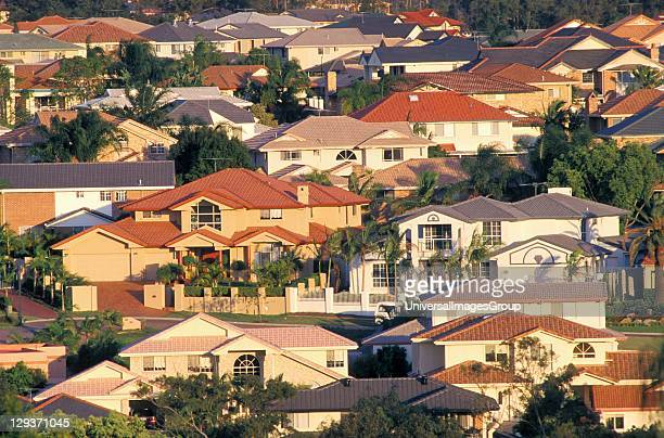 Suburban jungle of houses clothing the hills of Brisbane instead of the retreating eucalypt forest Hard nonabsorbant roofs courtyards and street...