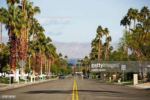 suburban street with palm trees - palm springs stock-fotos und bilder