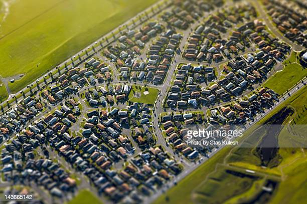 Suburban streets of South Auckland