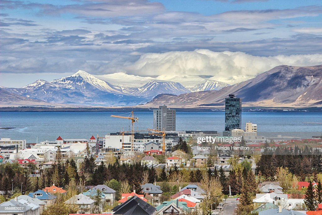 Suburbs of beautiful Reykjavik : Stock Photo