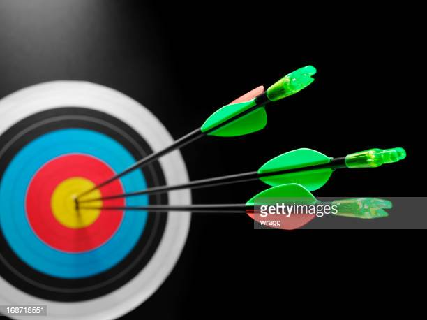 Success in Hitting a Archery target
