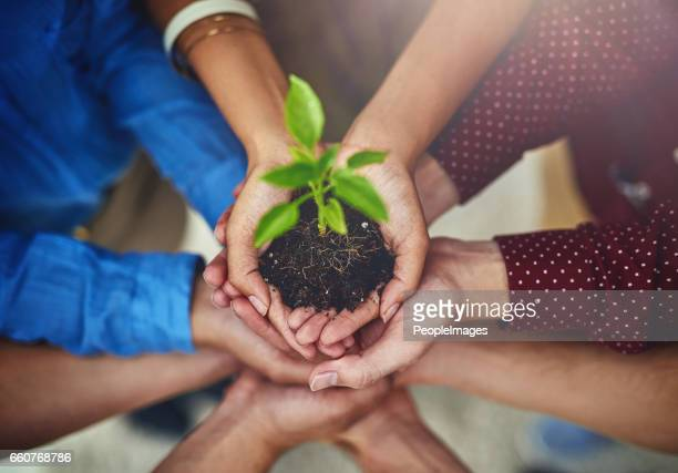 success means helping each other grow - environmental conservation stock photos and pictures