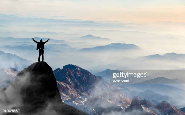 success - mountain peak stock pictures, royalty-free photos & images