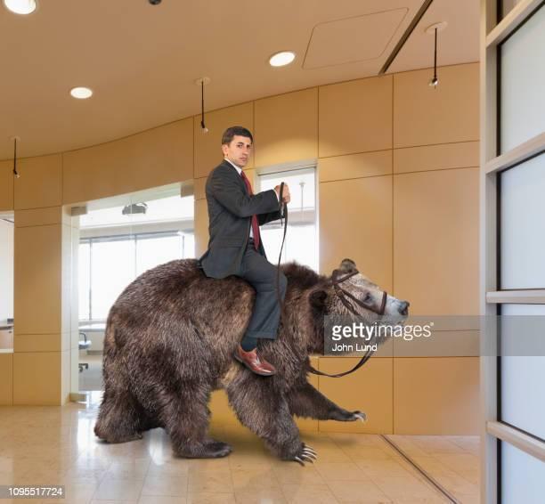 successful businessman in a bear market - risiko stock-fotos und bilder