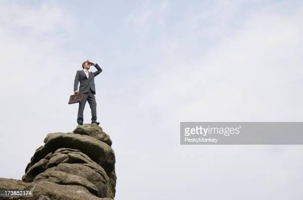 Exitoso hombre de negocios de pie en el pico de la montaña con vista
