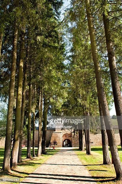 sucevita monastery entrance alley - moldavia fotografías e imágenes de stock