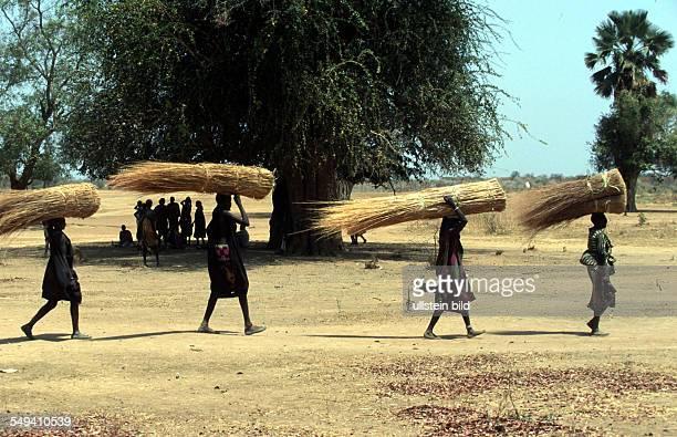 women with rakuba for building grass huts