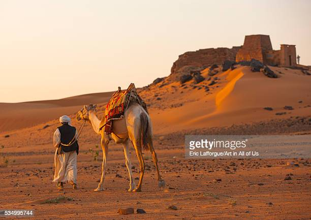Sudan Kush Meroe man and his camel in front of the pyramids and tombs in royal cemetery