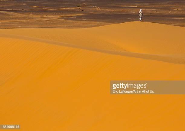 Sudan Kush Meroe man on a dune