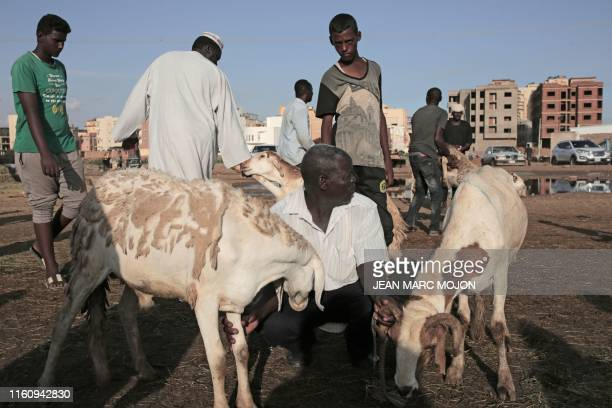 Sudanese Muslims buy livestock at a market in Sudan's capital Khartoum on August 11 as they mark their first Eid AlAdha feast without Omar alBashir...