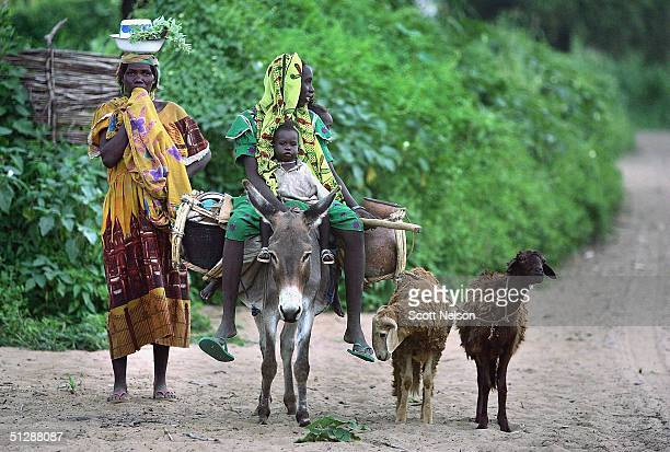 Sudanese refugee family carry with them what little belongings they have from the violence plagued Darfur region into neighbouring Chad after...