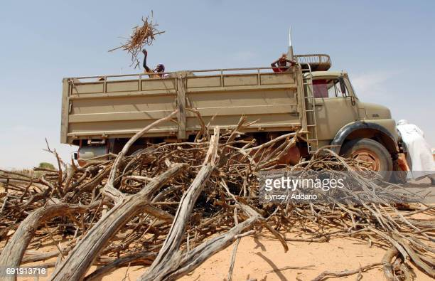Sudanese refugees gather around a truck full of firewood provided by CARE in Touloum camp in northeastern Chad October 15 2006 Chad with its very...