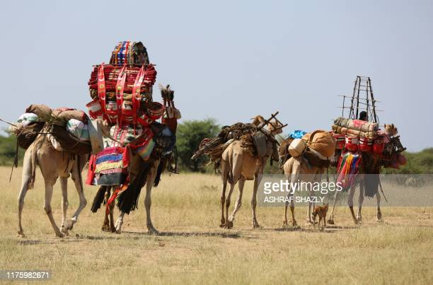 Sudanese villagers tansport their belongings on camels on October 10 2019 in the village of Shattaya some 150 kms west of Niayla the capital of...