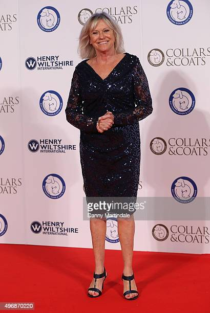 Sue Barker attends Battersea Dogs Cats Home Collar And Coats Ball at Battersea Evolution on November 12 2015 in London England