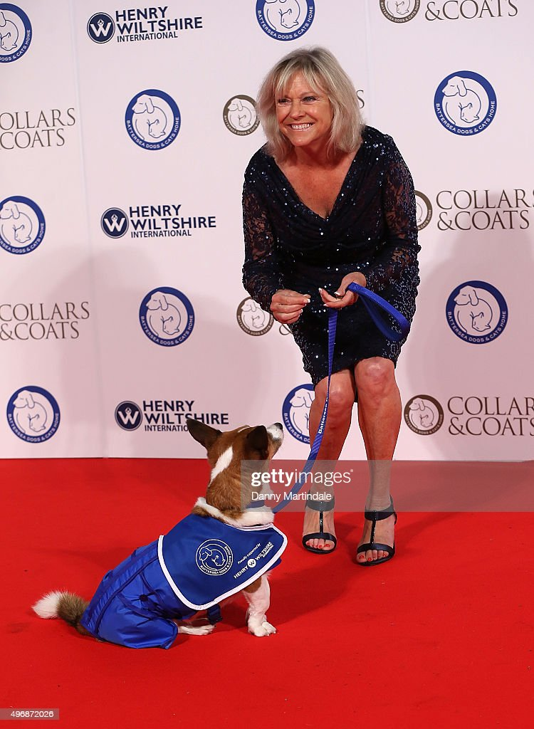 Battersea Dogs & Cats Home Collar And Coats Ball