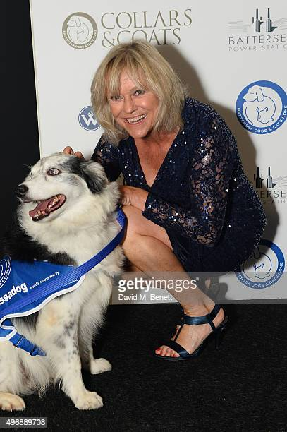 Sue Barker attends the Battersea Dogs Cats Home Collars and Coats Gala Ball at Battersea Evolution on November 12 2015 in London England